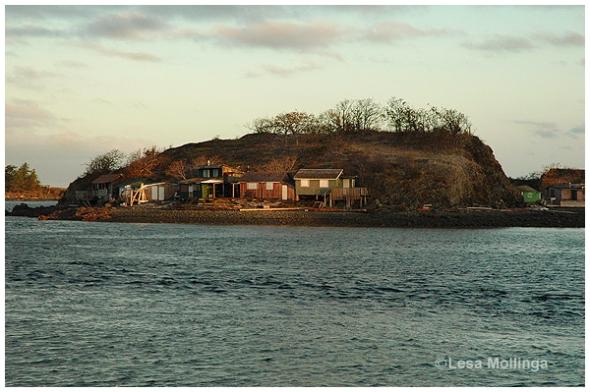 Shack Island Sunrise